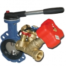 Isolating and balancing valves