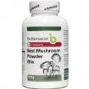 BEST MUSHROOM POWDER MIX